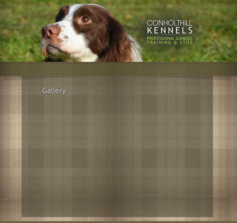 Conholthill Kennels Gundog Training and Stud | Chris Green